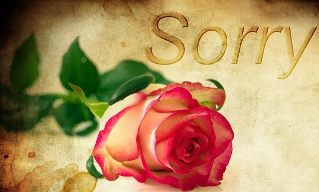 言い過ぎた時の謝り方!職場や彼氏、彼女にも